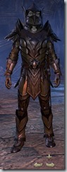 Dark Elf Dragonknight Veteran - Male Front