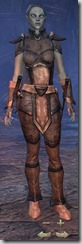 Dark Elf Nightblade Novice - Female Front