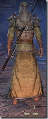Dark Elf Sorcerer Novice - Male Back