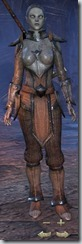 Dark Elf Templar Novice - Female Front