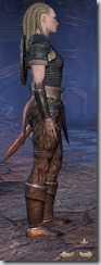 Nord Dragonknight Novice - Female Right