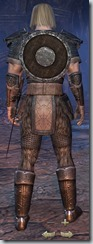 Nord Dragonknight Novice - Male Back