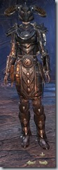 Nord Dragonknight Veteran - Female Front