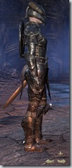 Nord Dragonknight Veteran - Female Right