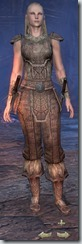 Nord Nightblade Novice - Female Front