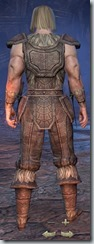 Nord Nightblade Novice - Male Back