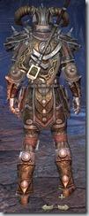 Nord Templar Veteran - Male Back