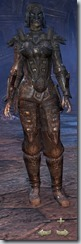 Orc Nightblade Veteran - Female Front