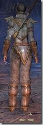 Orc Templar Novice - Female Back