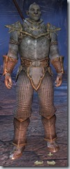 Orc Templar Novice - Male Front