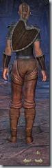 Redguard Dragonknight Novice - Female Back