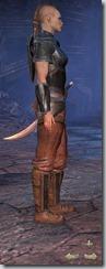 Redguard Dragonknight Novice - Female Right