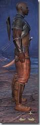 Redguard Dragonknight Novice - Male Right