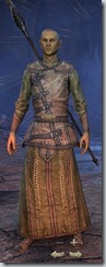 eso-high-elf-sorcerer-novice-armor-male