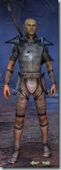 eso-high-elf-templar-novice-armor-male