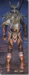 eso-high-elf-templar-veteran-armor-male-3