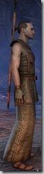eso-imperial-sorcerer-novice-armor-male-2