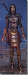 eso-imperial-templar-novice-armor