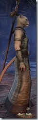 eso-khajiit-sorcerer-novice-armor-2