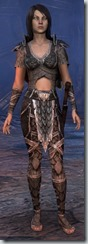 eso-wood-elf-dragonknight-novice-armor - Copy