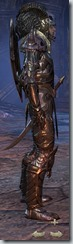 eso-wood-elf-dragonknight-veteran-armor-male-2