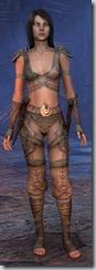 eso-wood-elf-nightblade-novice-armor