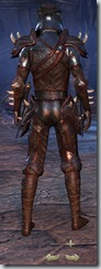 eso-wood-elf-nightblade-veteran-armor-male-3