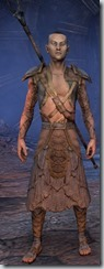 eso-wood-elf-sorcerer-novice-armor-male