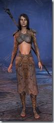 eso-wood-elf-sorcerer-novice-armor