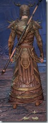 eso-wood-elf-sorcerer-veteran-armor-male3