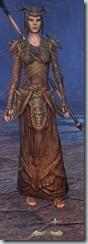 eso-wood-elf-sorcerer-veteran-armor