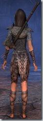 eso-wood-elf-templar-novice-armor-3