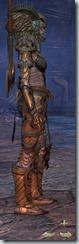 eso-wood-elf-templar-veteran-armor-2