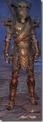 eso-wood-elf-templar-veteran-armor-male