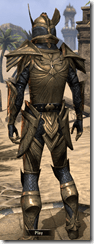 Altmer Ebon - Male 46 Superior Back