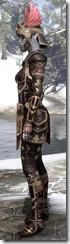 Imperial Brigandine - Female VR3 Superior Left