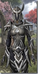 Altmer Ebon - Female 48 Fine Close Front