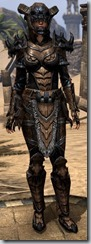 Bosmer Bone-Imbued - Female 46 Normal Front