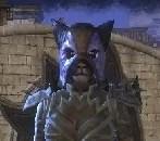 Baan Dar The Cat – [NA]
