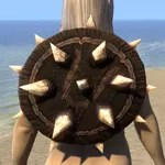 Barbaric Beech Shield