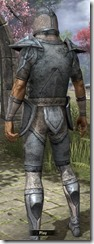Altmer Iron - Male Back