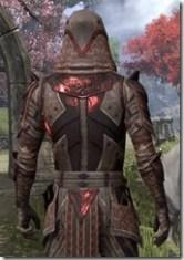 Assassin's League Rubedite - Male Close Back