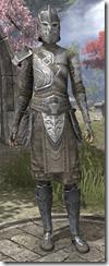 Female-Armor-Mercenary-Steel-lv16-white-front