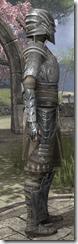 Female-Armor-Mercenary-Steel-lv16-white-side