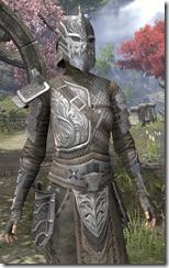 Female-Armor-Mercenary-Steel-lv16-white-torso