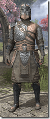 Male-Armor-Mercenary-Ebony-lv46-white-front