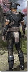 Nord Iron - Male Back