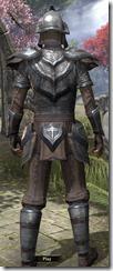 Redguard Steel - Male Back