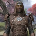 Thieves Guild Rawhide