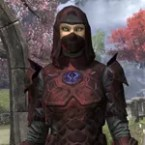 Thieves Guild Rubedo Leather